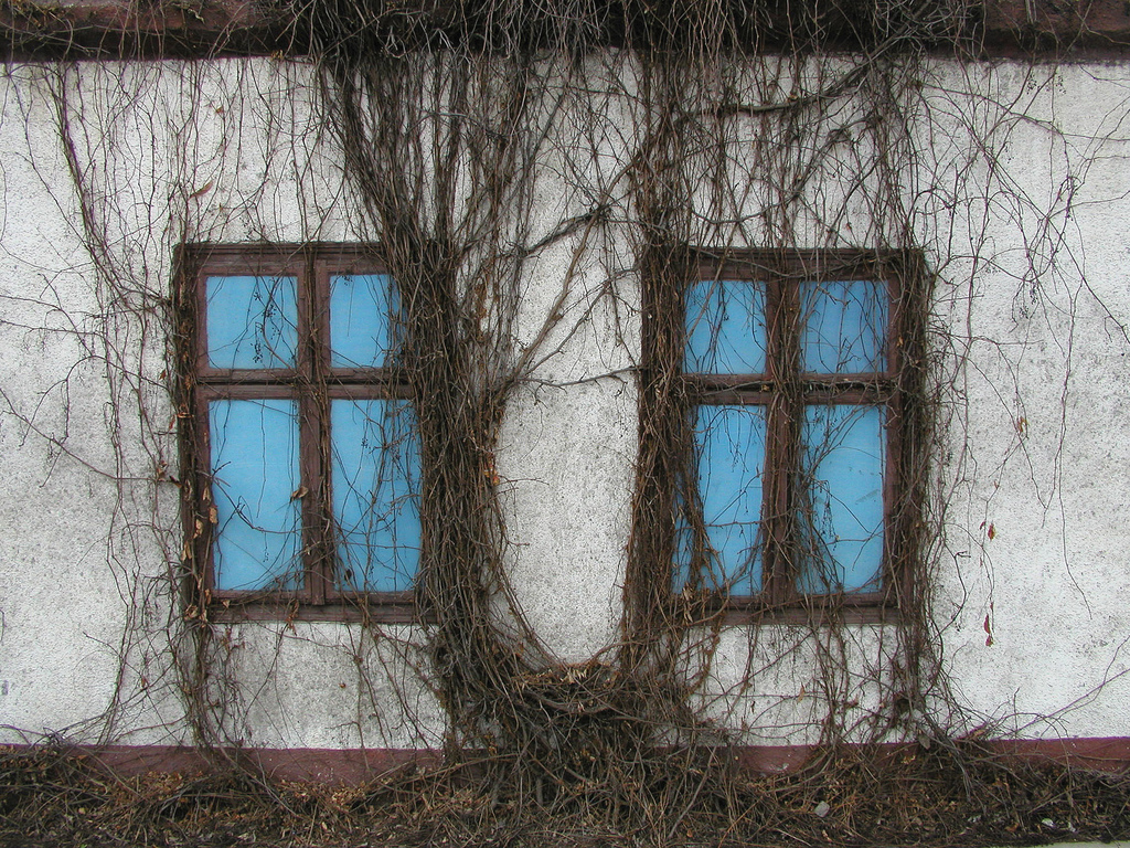 ZABUDOWA WSI GOŁKOWICE, fot. M. Klag (MIK, 2006) CC BY SA 3.0