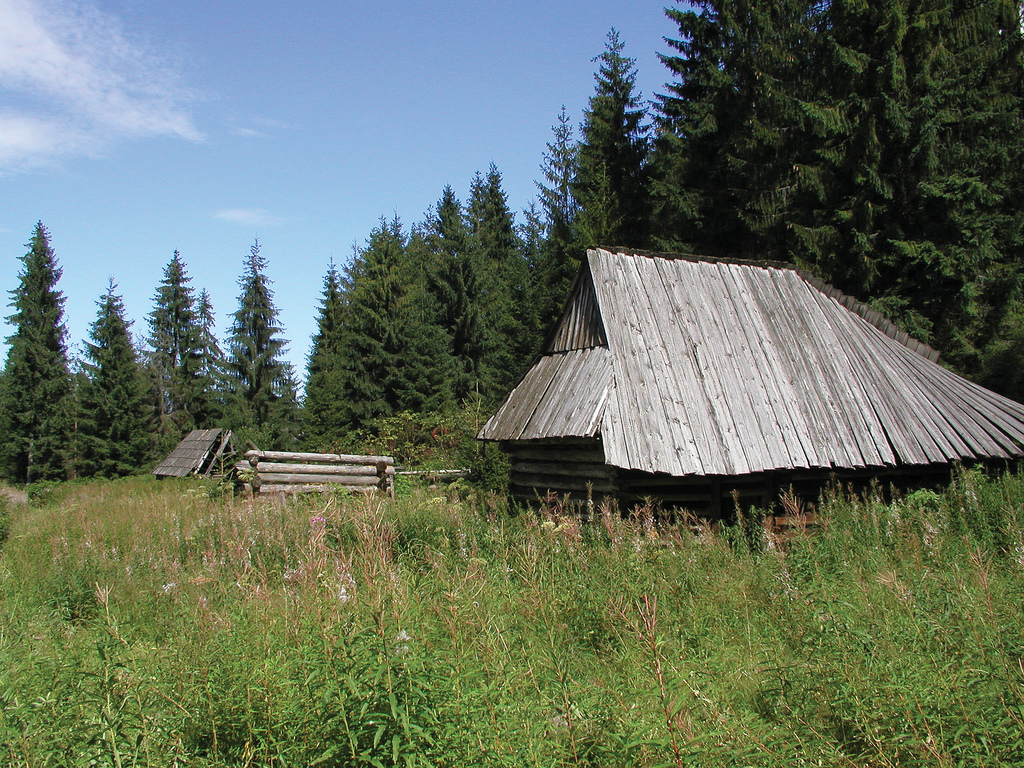SZAŁASY NA POLANIE PODKÓLNA W JURGOWIE, fot. M. Klag (MIK, 2001) CC BY SA 3.0